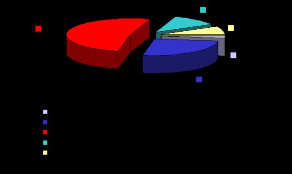 CANgrafico